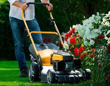 Как выбрать газонокосилку: высота травы
