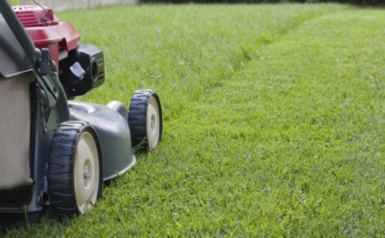 Как выбрать газонокосилку: размер колес