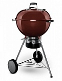 ����� �������� Weber Master-Touch GBS